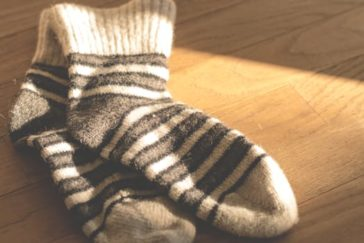 Sock Stealing and Other Canine Crimes